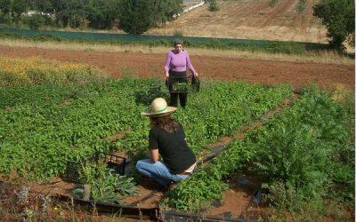 Asaja reclama igualdad de oportunidades para la mujer rural