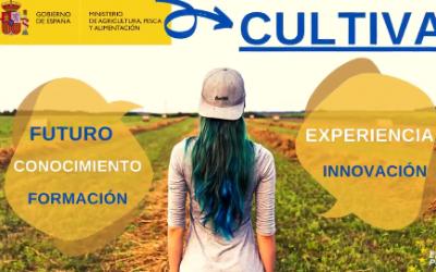 La directora general de Desarrollo Rural, Isabel Bombal, señala que la presencia de jóvenes y mujeres es clave para el futuro económico y social